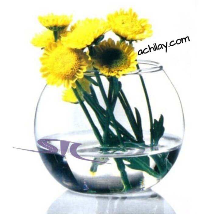 مینی گلدان بلوری